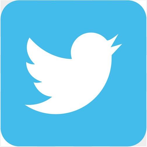 Twitter social media icon design template vector